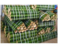 Vendo  canne di bambù bambu aventi diametro da 1 cm. fino a 11 cm.