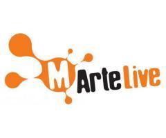 Stage Social Media Strategist per MArteLive e MArteLabel