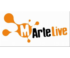 Responsabile e stagista Social Media Strategist per MArtelive