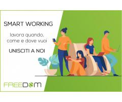 Consulenti Smart Working
