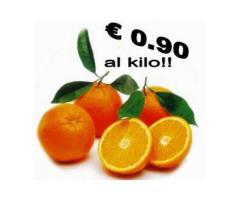 Arance tarocco della Calabria a € 0.90 al kilo.