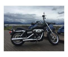 Harley Davidson Street bob 1450