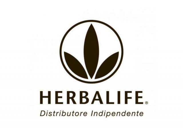 distributore indipendente herbalife  igor carli